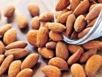Установлен самый полезный орех для иммунитета
