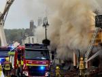 Сотрудники британского магазина сожгли его в попытках кремировать мышь