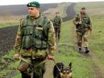 В Луганской области пограничники уничтожили 20 тысяч кустов конопли
