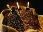 Ученые поведали, в каком количестве нужно пить кофе, чтобы похудеть
