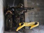 Французские военные испытали робота-собаку