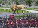 В Китае открыли уникальный зоопарк с людьми в клетках