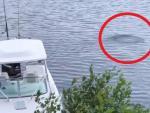 В озере Нью-Гэмпшира засняли странный объект