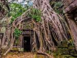 Ученые назвали причину упадка Ангкора