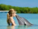 Британские ученые выявили сходство дельфинов с людьми