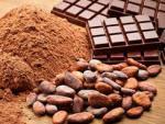 Ученые обнаружили неожиданную пользу какао