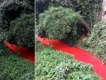 В Китае река за ночь стала кроваво-красной