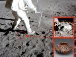 На поверхности Луны нашли древний кувшин
