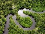 Странный факт: леса Амазонки стали одной из причин глобального потепления