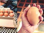 Австралийский фермер нашел под курицей огромное яйцо
