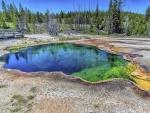 На дне озера Йеллоустоун происходят гидротермальные взрывы