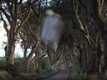 В Северной Ирландии впервые в истории сфотографировали призрака
