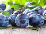 Обнаружен спасающий от рака летний фрукт