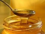 США нарастили импорт меда из Украины