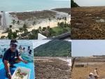 Жители Таиланда напуганы: вода отошла от берега на два километра