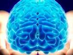 Ученые рассказали о серьезных последствиях сотрясения мозга, полученного в молодости